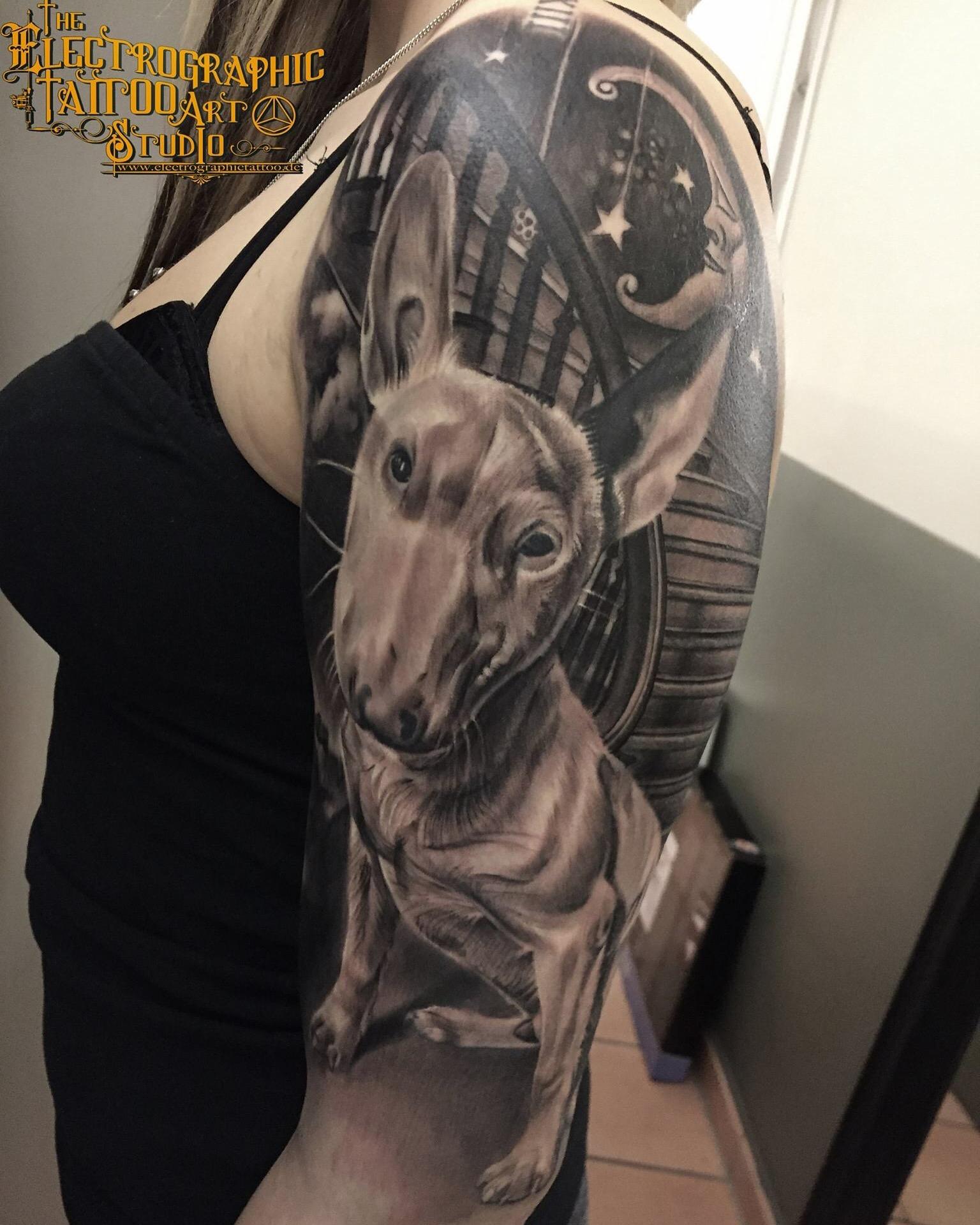 bull terrier, surreal, electrographic tattoo,germany, bayern, rosenheim, münchen , salzburg , innsbruck, vogel, rose, tattoo, tattoo art, color, realistic