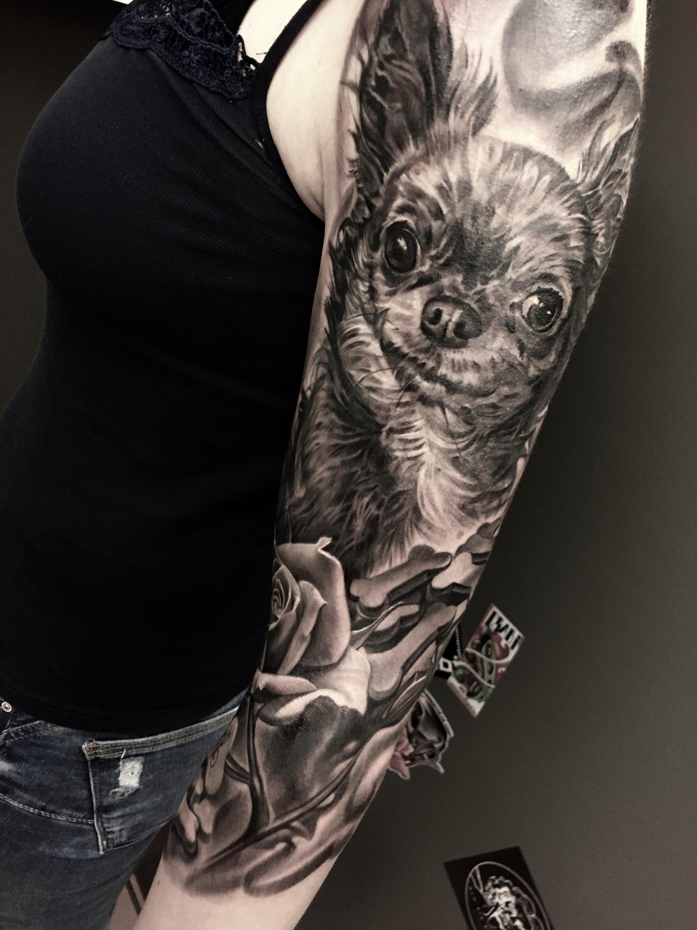 chiwawa,dog, portrait, realismus, electrographic tattoo,germany, bayern, rosenheim, münchen , salzburg , innsbruck, vogel, rose, tattoo, tattoo art, color, realistic 2