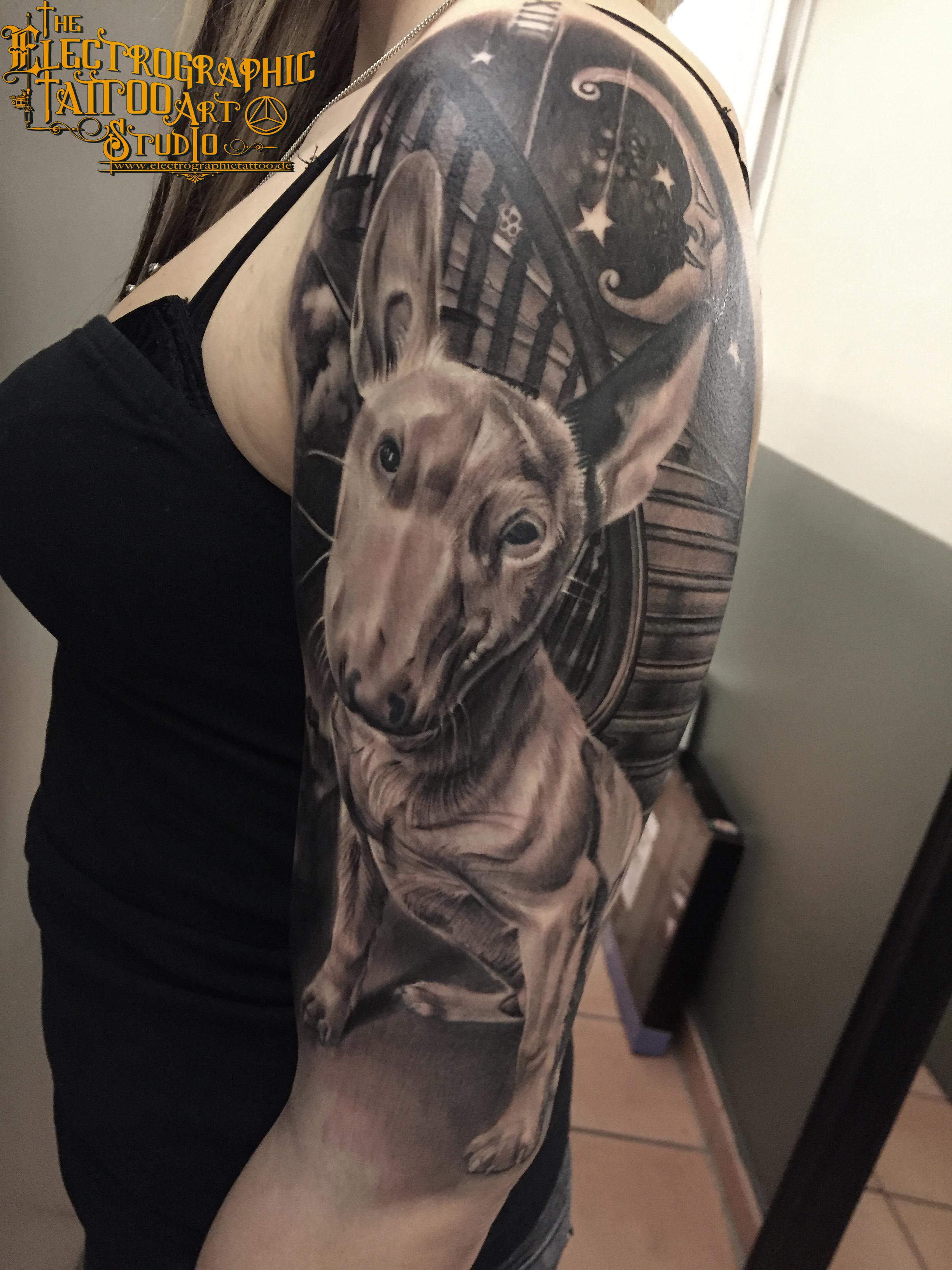 tatt, by electrographic tattoo, rosenheim, bayern, germany, hungary, turanium tattoo machines, mini bull terrier, dream